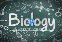 Download Prediksi Soal UNBK SMA Jurusan IPA Tahun 2020 Beserta Jawaban Mapel Biologi