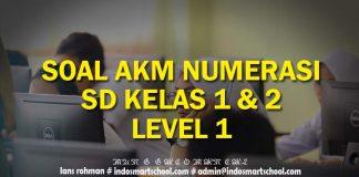 Contoh Soal AKM Numerasi Level 1 ( Kelas 1 & 2) SD Beserta Jawaban Part II